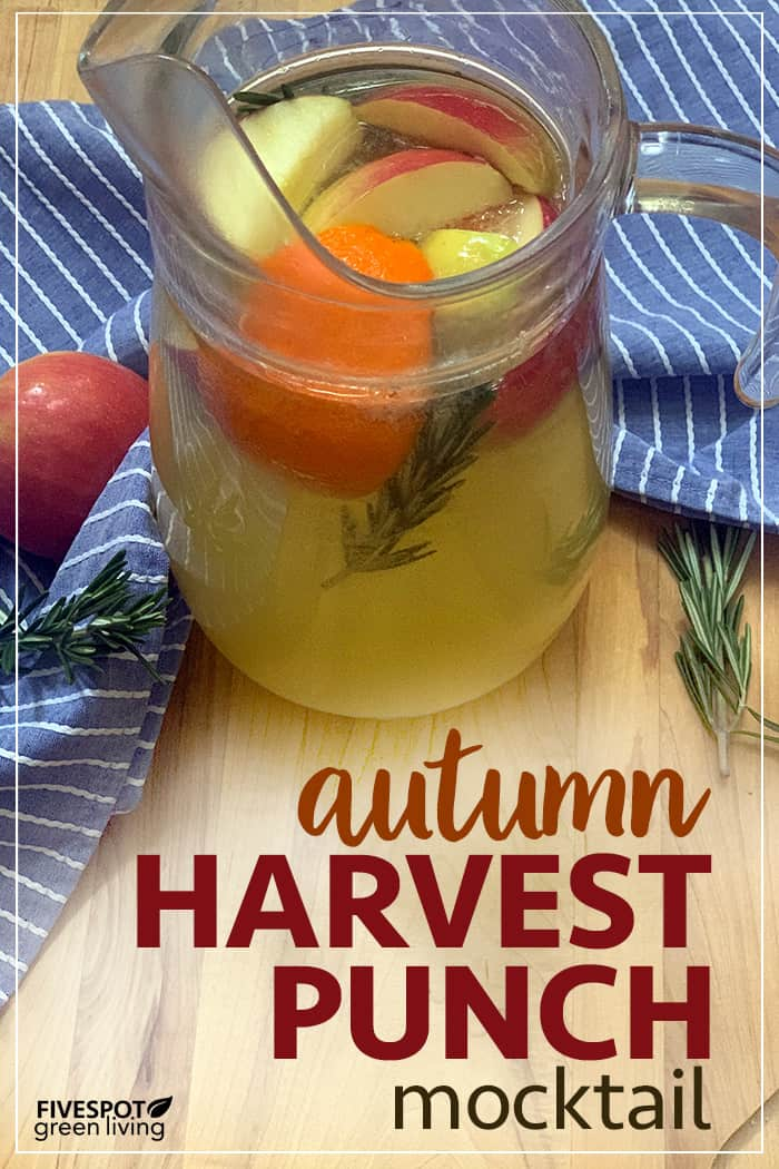 autumn harvest mocktail