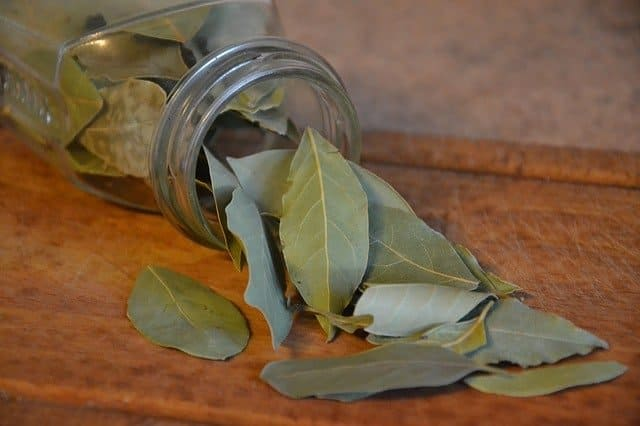 bay leaves for pantry bug repellent