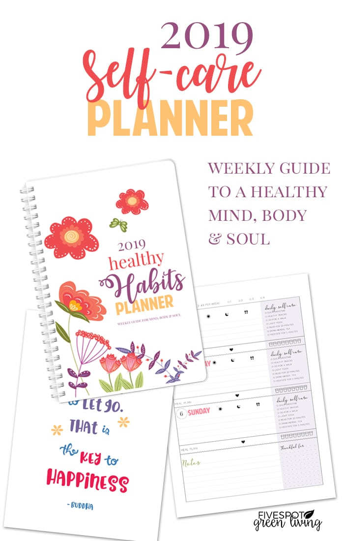 2019 healthy habits self care planner