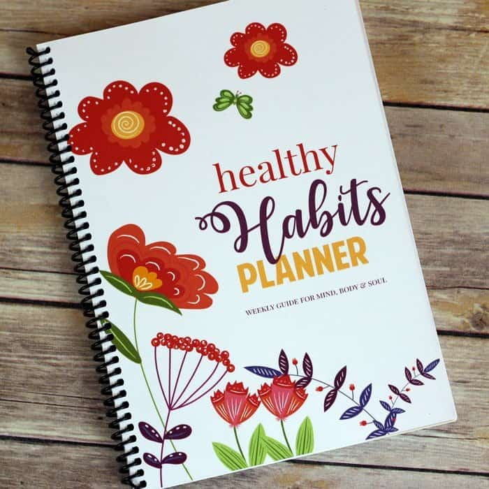 blog-self-care-planner-front Top Migraine Triggers Caused by Food