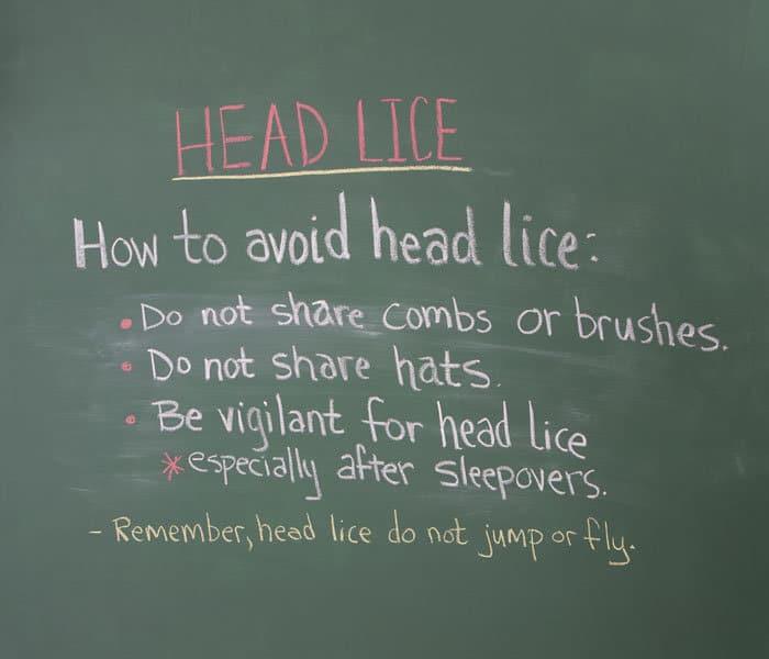 head lice chalkboard