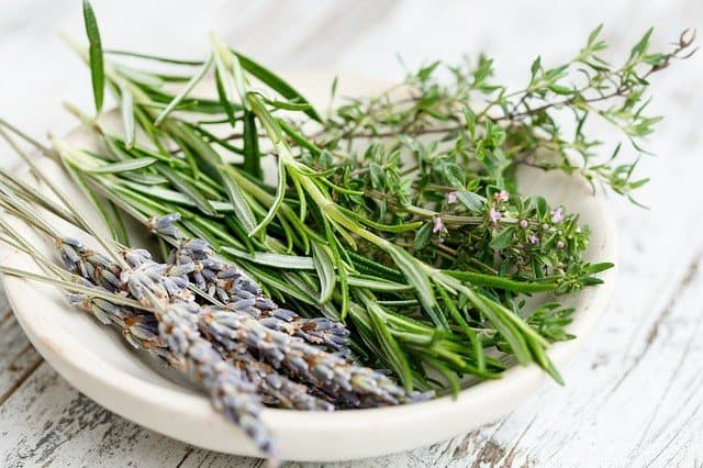 thyme rosemary and lavender