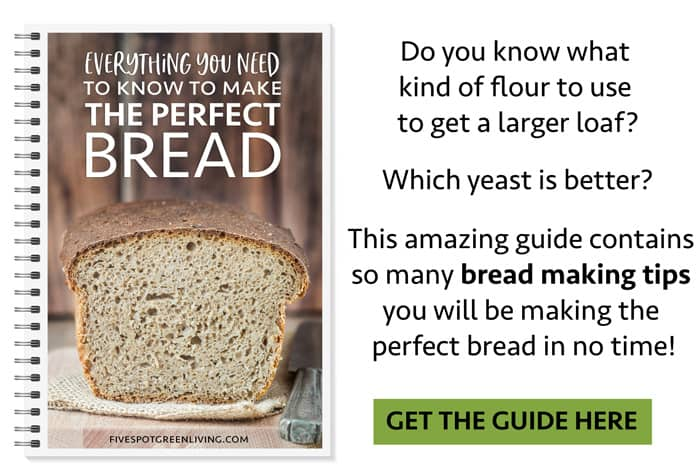 free bread making tips