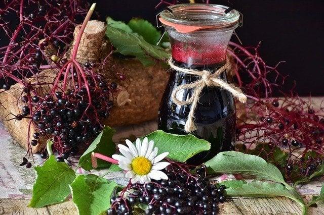 elder-2652570_640 Home Remedies for Flu