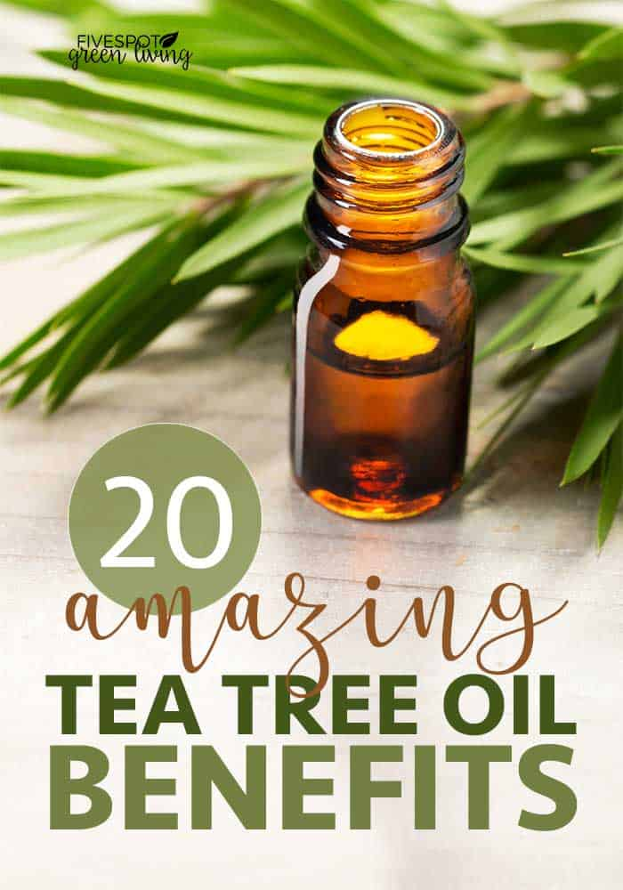 20 amazing tea tree oil benefits