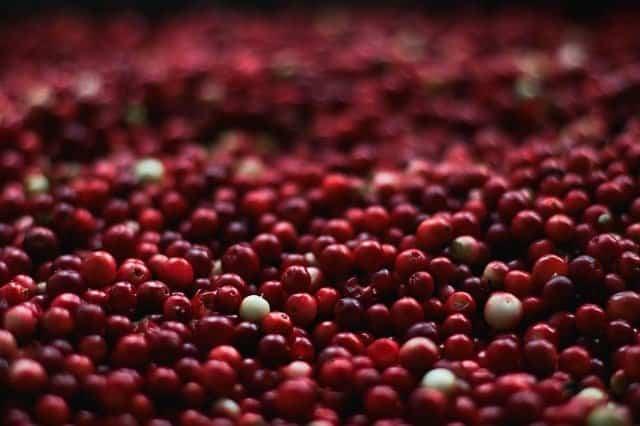 cranberries for uti