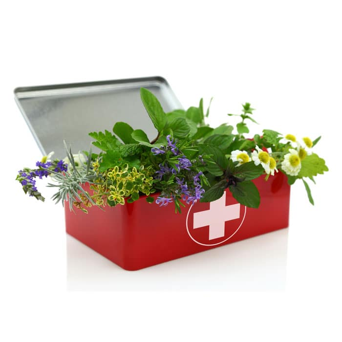 first aid kit with herbs