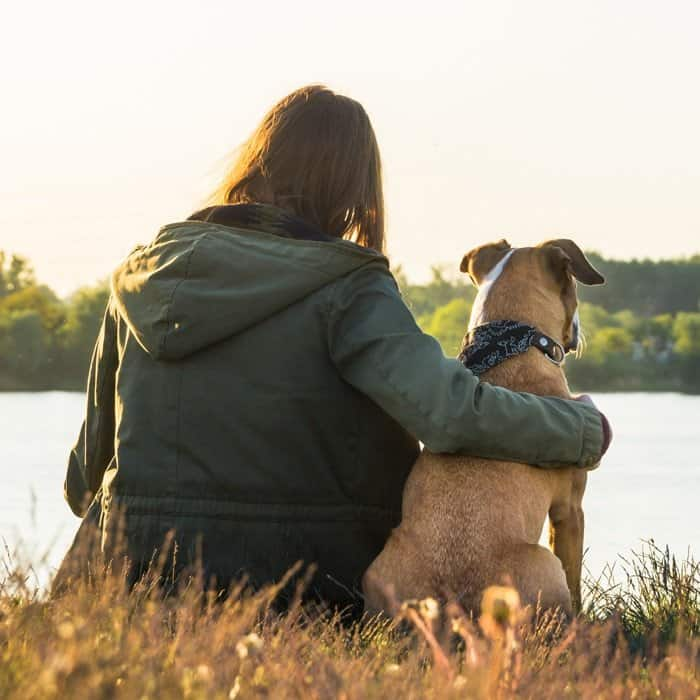 Everything you need to know about Emotional Support Animals