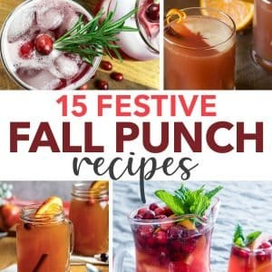 Festive Fall Punch Recipes for your autumn gathering