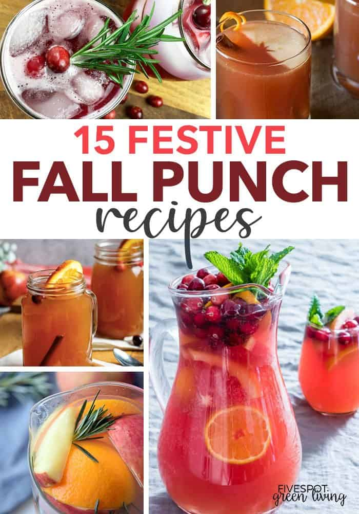 fall punch recipes