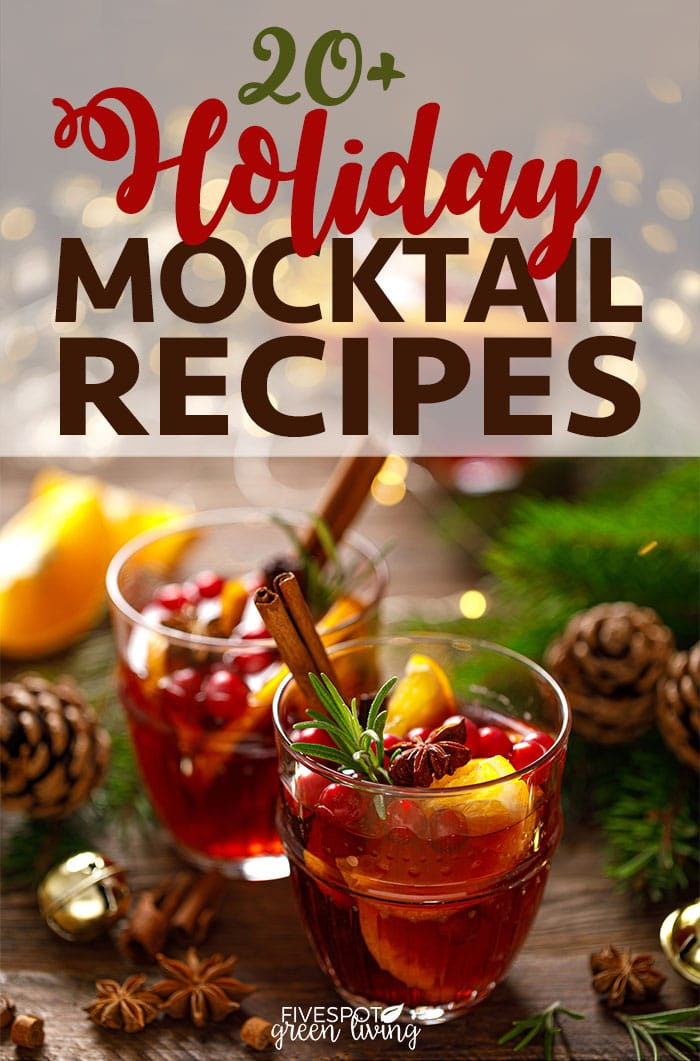 Celebrate the holidays with one of these easy holiday mocktail recipes that the whole family can enjoy.