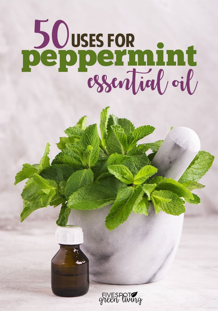50 uses for peppermint essential oil
