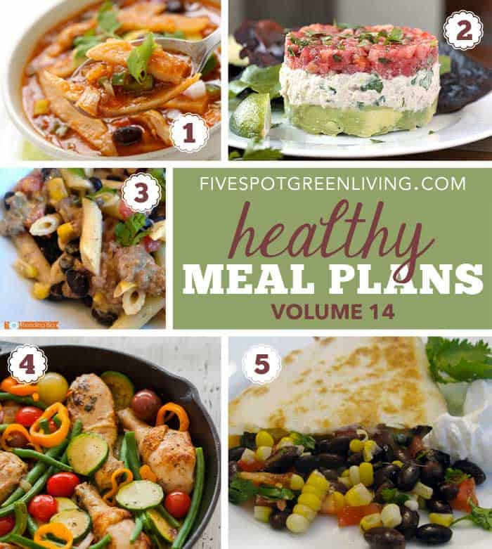 Healthy Meal Plans Monday Volume 14