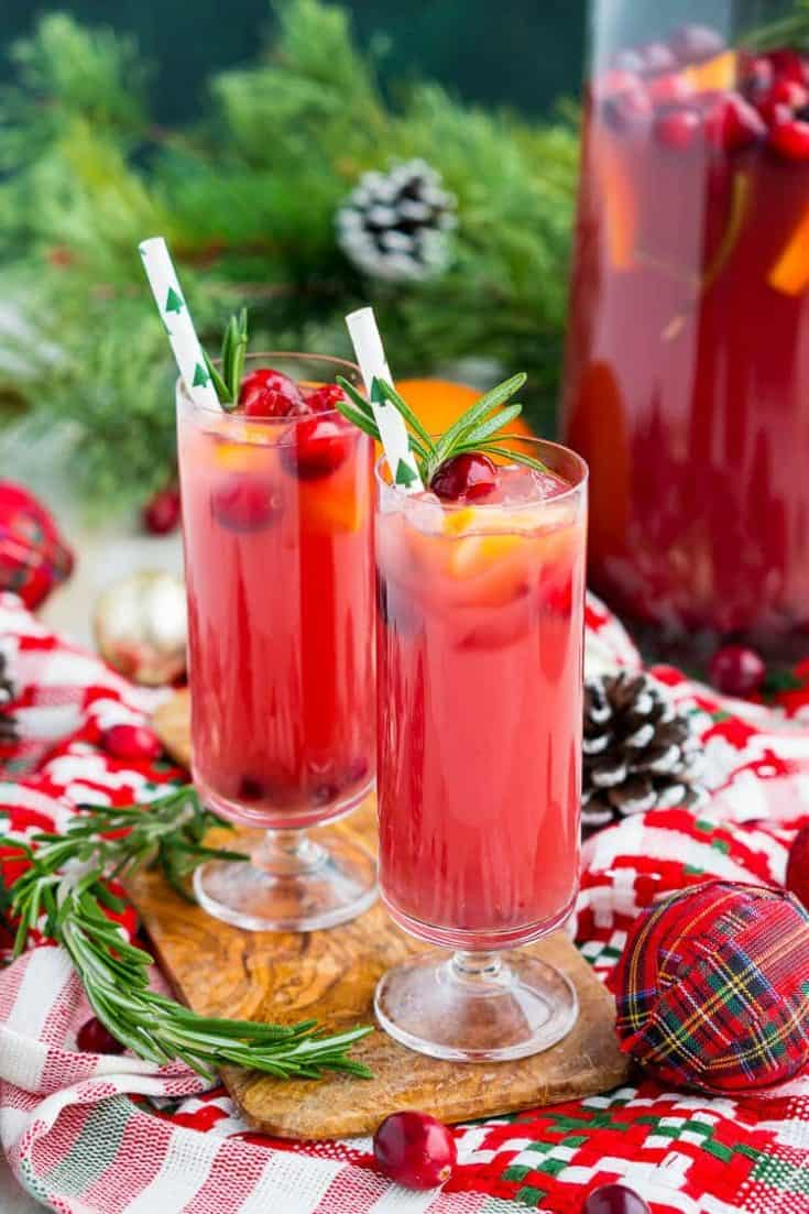 christmas-punch-recipe-3-735x1103 20 Cranberry Spritzer Mocktails for Valentines Day