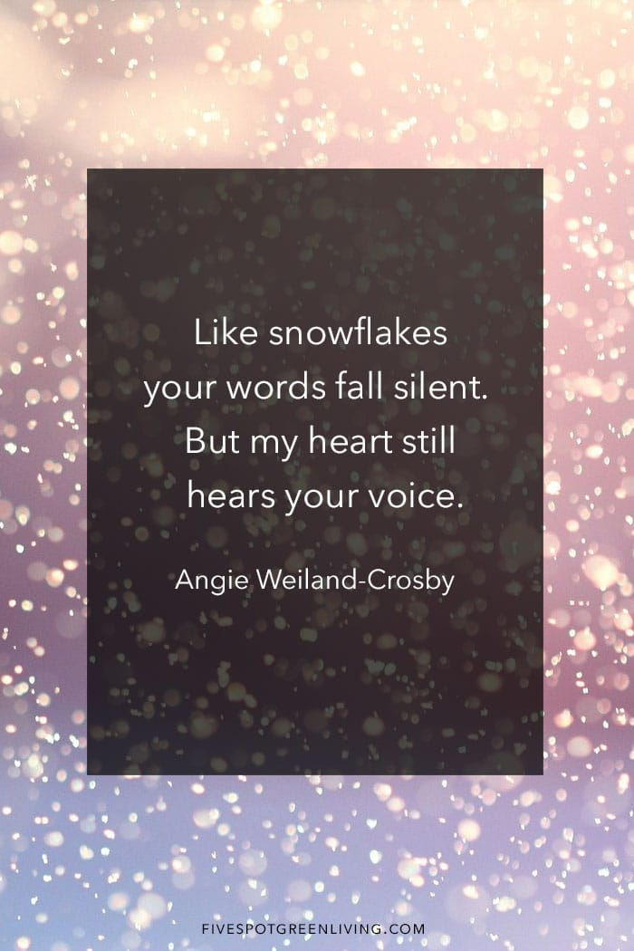 Like snowflakes your words fall silent.  But my heart still hears your voice.