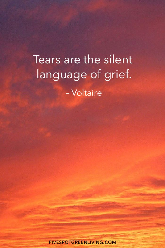 Tears are the silent language of grief.