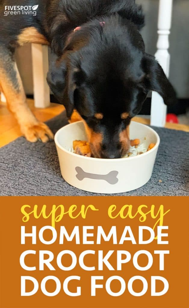Homemade healthy crockpot dog food recipe