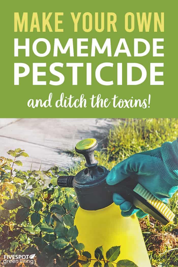 How to Make Homemade Pesticide Spray