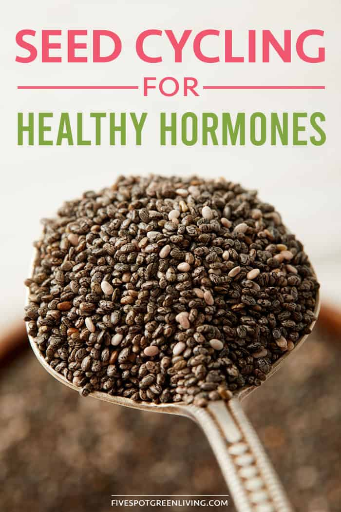 Seed Cycling for Hormone Imbalance and Fertility