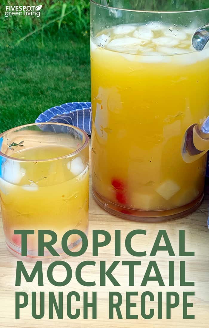 easy tropical punch recipe