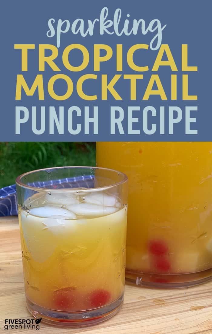 Sparkling Tropical Punch Recipe