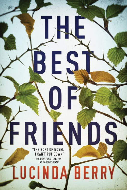 the best of friends book