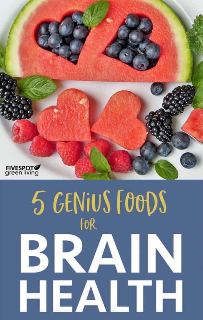 5 Genius Foods for Brain Health