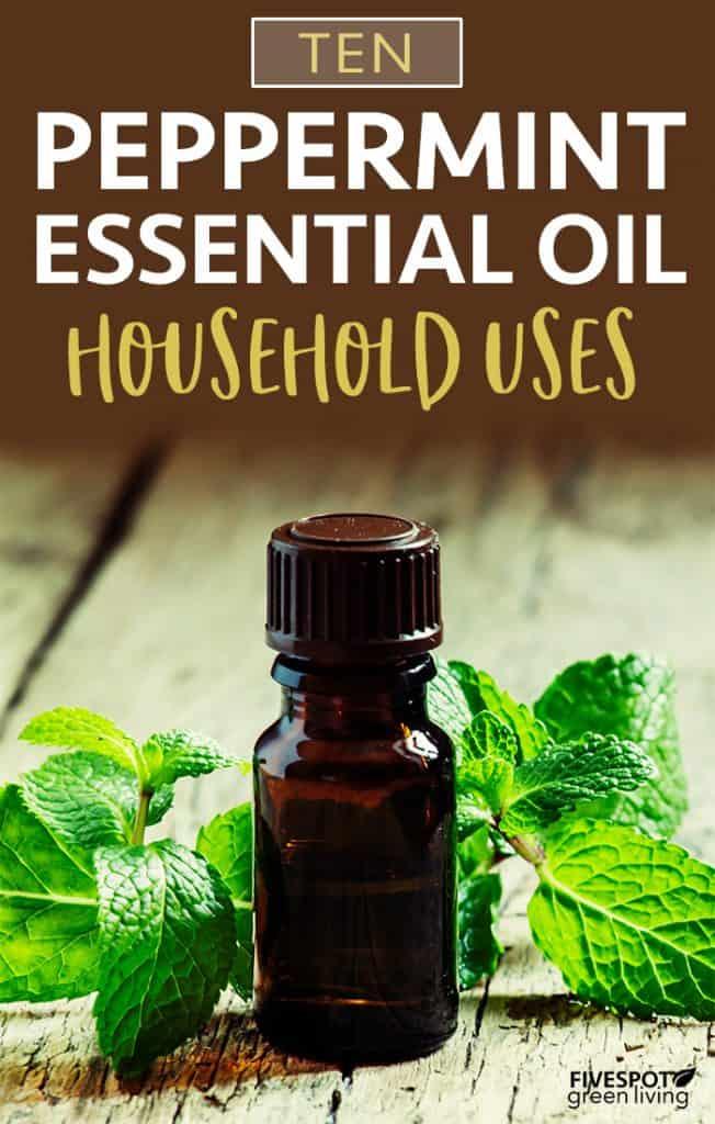 10 Household Uses for Peppermint Oil