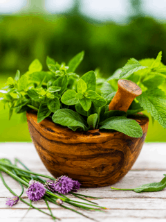 herbal muscle relaxers